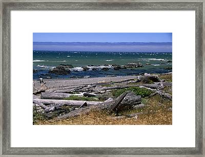 The Lost Coast Framed Print by Soli Deo Gloria Wilderness And Wildlife Photography