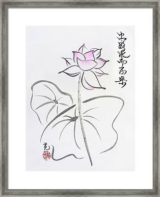 The Lotus Rises Out Of Muddy Waters Untainted Framed Print by Oiyee At Oystudio