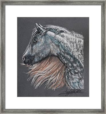 The Lovely Dapples Framed Print by Terry Kirkland Cook