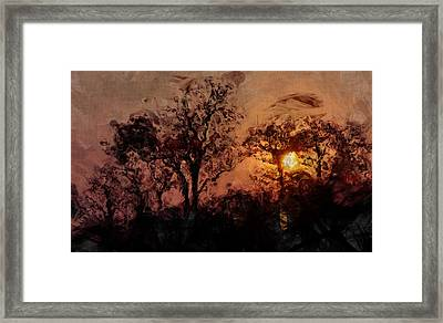 The Madness Of Twilight Framed Print by Mark Denham