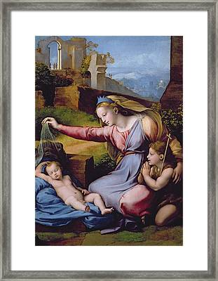 The Madonna Of The Veil Framed Print by Raphael