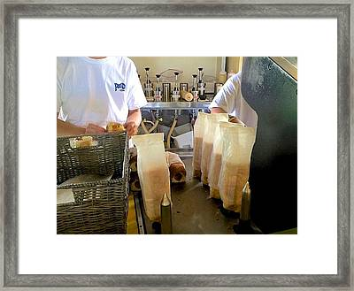The Making Of A Puka Dog Framed Print by Brenda Pressnall