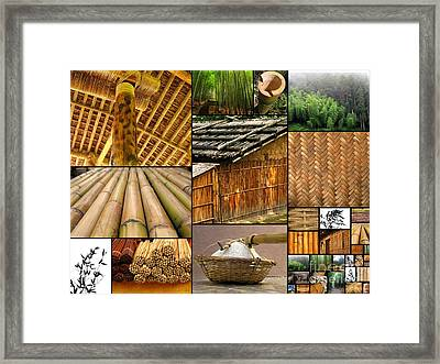 The Many Faces Of Bamboo Framed Print by Yali Shi