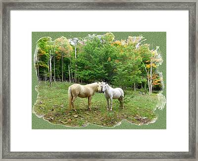 The Mares Watch Framed Print by Patricia Keller