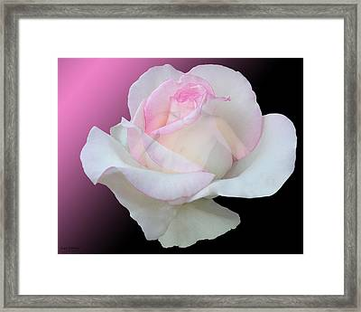 The Mask Framed Print by Torie Tiffany