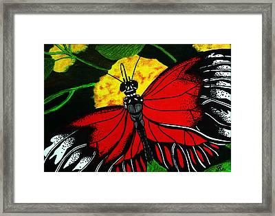 The Monarch Framed Print by Ramneek Narang