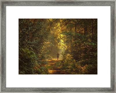 The Morning Jog Framed Print by Chris Fletcher
