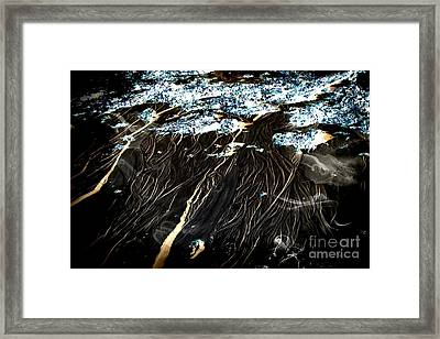 The Mystery Beneath The Water Framed Print by Marcia Lee Jones