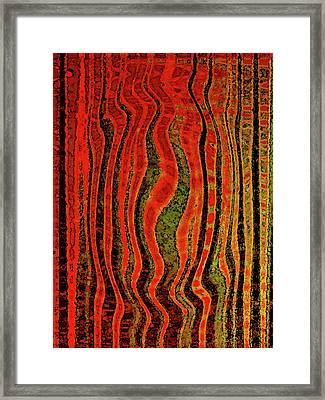 The Narrow Way Framed Print by Bonnie Bruno