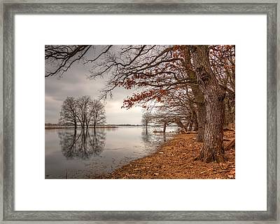 The New Autumn Framed Print by Nico Trinkhaus