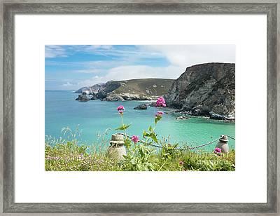 The North Cornwall Coast Framed Print by Terri Waters