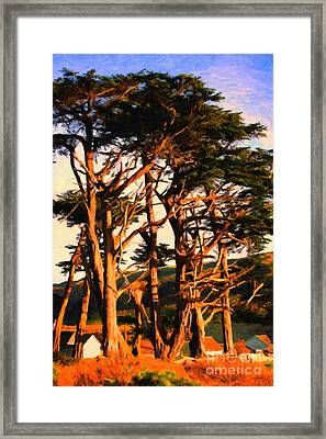 The Old Grove At The Ranch At Sunset . 40d4531 . Painterly Framed Print by Wingsdomain Art and Photography