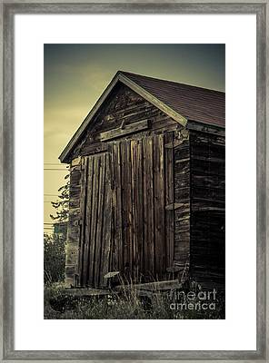 The Old Shed Framed Print by Lisa Killins