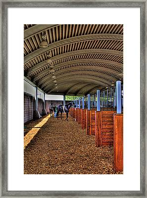 The Paddock Framed Print by David Patterson