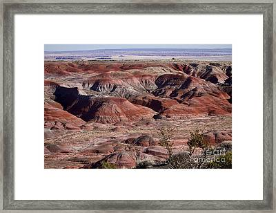 The Painted Desert  8062 Framed Print by James BO  Insogna