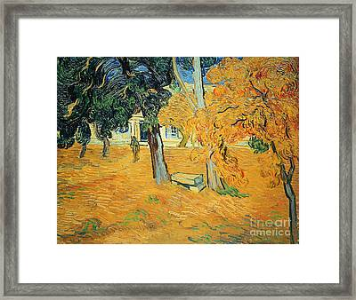 The Park At Saint Pauls Hospital Saint Remy Framed Print by Vincent van Gogh