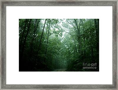 The Path Ahead Framed Print by Clayton Bruster
