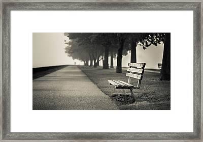 The Path To Rest Framed Print by Josh Eral