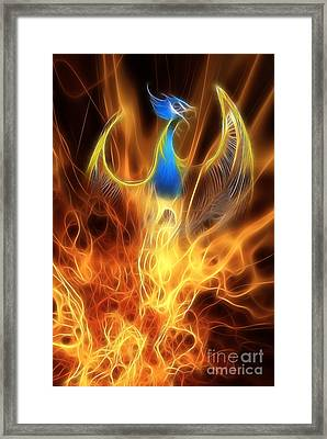The Phoenix Rises From The Ashes Framed Print by John Edwards