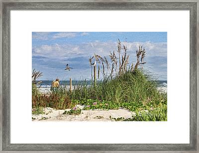 The Ponce Dune Framed Print by Deborah Benoit