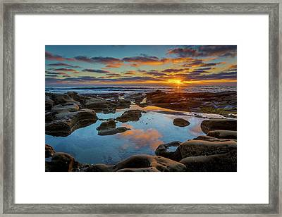 The Pool Framed Print by Peter Tellone