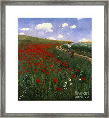 The Poppy Field Framed Print by Pal Szinyei Merse