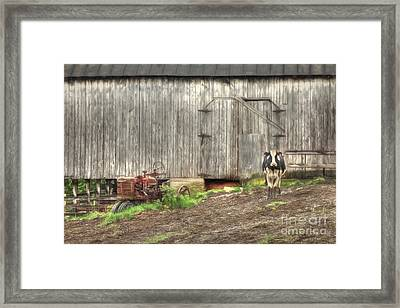 The Poser Framed Print by Benanne Stiens