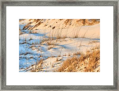 The Pristine Dunes Of St Joe State Park Framed Print by JC Findley