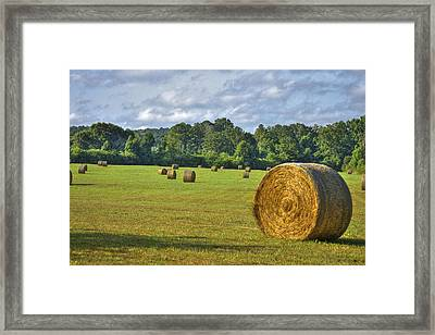 The Productive Southern Hay Field Framed Print by Reid Callaway