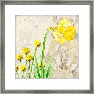 The Promise Of Spring - Daffodil Framed Print by Audrey Jeanne Roberts