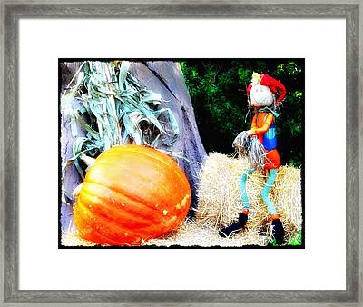 the Pumpkin and the Scarecrow Framed Print by Bill Cannon