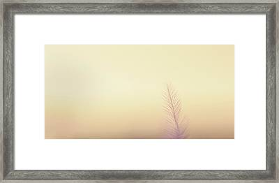 The Questions Worth Asking Framed Print by Scott Norris