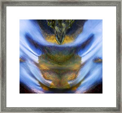 The Rage Within Framed Print by Basie Van Zyl