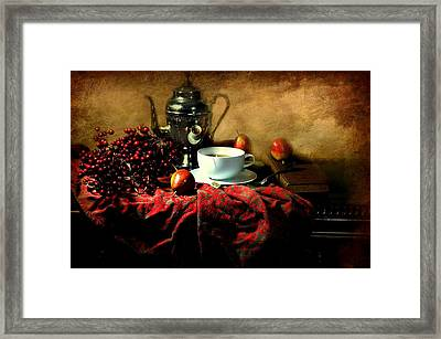 The Red Cloth Framed Print by Diana Angstadt