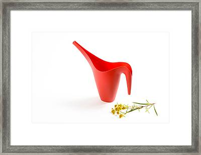 The Red Watering Can With Flowers Framed Print by Lynn Berreitter