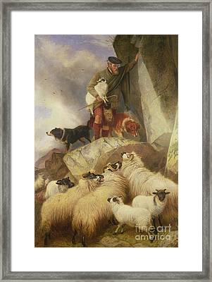 The Rescue Framed Print by Richard Ansdell