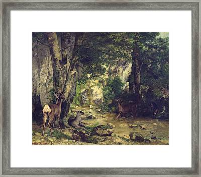 The Return Of The Deer To The Stream At Plaisir Fontaine Framed Print by Gustave Courbet