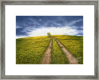 The Road Less Traveled Framed Print by Sarah Batalka