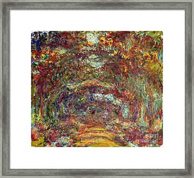 The Rose Path Giverny Framed Print by Claude Monet