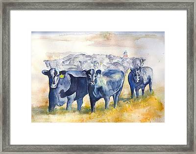 The Round Up Cattle Drive  Framed Print by Sharon Mick