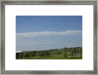 The Royal Motorcade Framed Print by Donna Munro