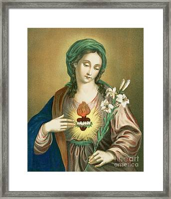 The Sacred Heart Of Mary Framed Print by German School
