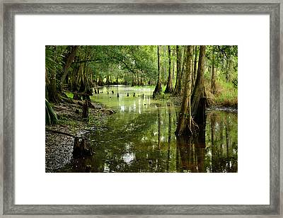 The Sanctuary Framed Print by Alan  Seelye-James