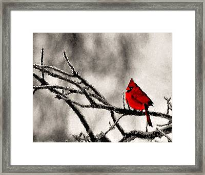 The Sentinel Framed Print by Kristin Elmquist
