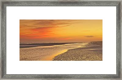 The Shallows Framed Print by Phill Doherty