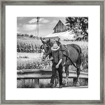 The Simple Life Bw Framed Print by Steve Harrington