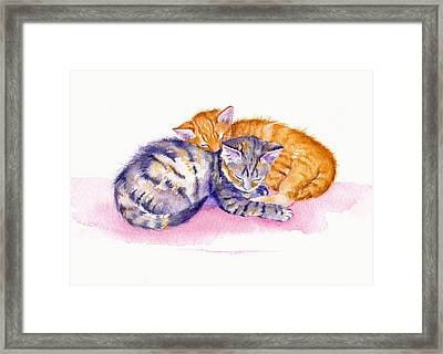 The Sleepy Kittens Framed Print by Debra Hall