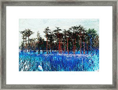 The Snow King 1899 Framed Print by David Lee Thompson