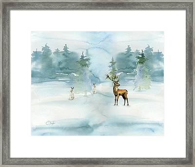 The Soft Arrival Of Winter Framed Print by Colleen Taylor