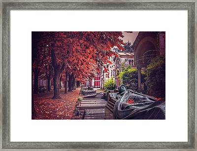 The Soldier  Framed Print by Carol Japp